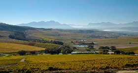 WinerySimonsberg_compressed